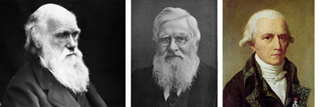 Charles Darwin, Alfred Wallace and Jean-Baptiste Lamarck. Important contributors in the history of evolutionary theory