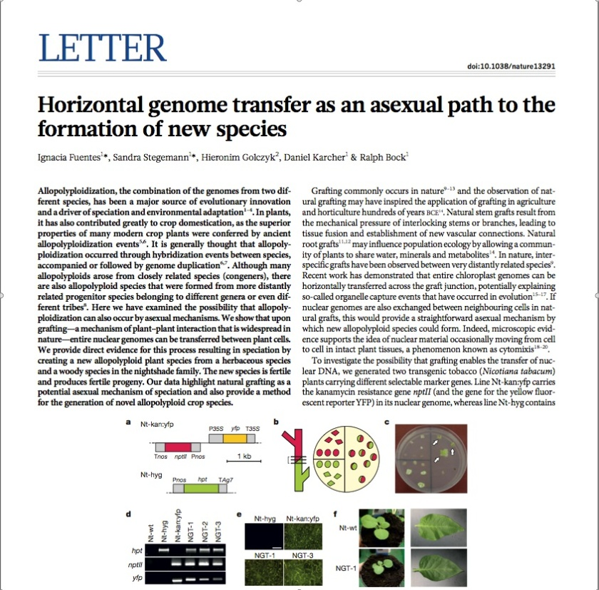 Fuentes et al. 2014. Horizontal genome transfer as an asexual path to the formation of new species