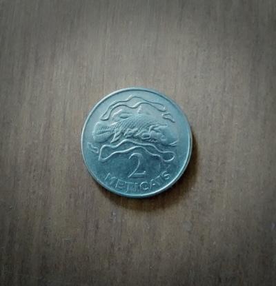 A Mozambican 2 Meticais coin