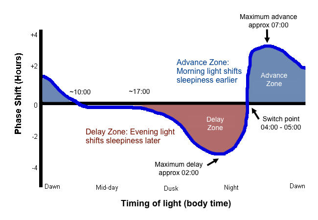 Light has different effects at different clock times